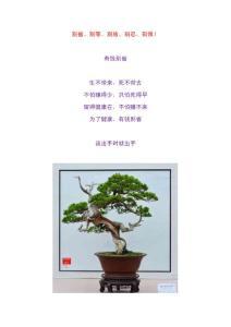 美图+配文 人生别省、别等..