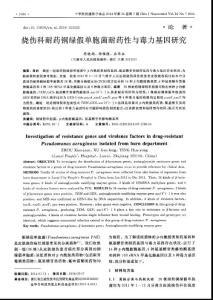 烧伤科耐药铜绿假单胞菌耐药性与毒力基因研究-论文