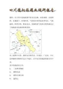 四川德阳旅游业调研报告