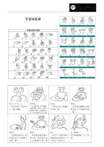 手语体验课-课外知识