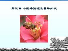 第三章 中国蜂资源及养蜂(xin)