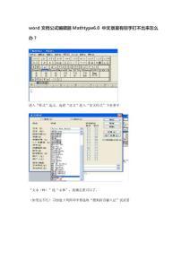 word文档公式编辑器Mathty..
