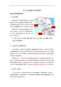 南京江宁九龙湖项目市场分析研究报告