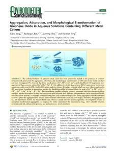 Aggregation_ Adsorption..