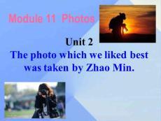 廣西中峰鄉育才中學九年級英語上冊 module 11 unit 2 the photo which we liked best was taken by zhao min教學課件 (新版)外研版
