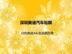 深圳奥迪汽车贴膜_白色奥迪A4L贴龙膜效果.ppt
