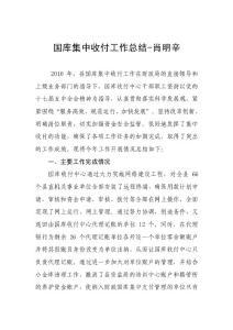 国库集中收付中心2010年工..