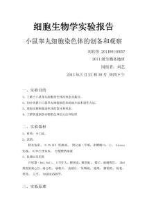 刘欣怡201100140057小白鼠..