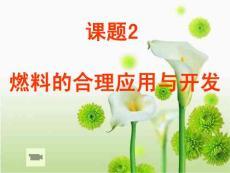 《燃料的合理利用与开发》 2