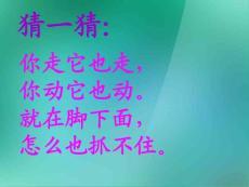 二年级美术上册 影子大王 ..