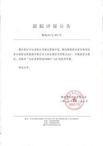 湖北省宏泰国有资本投资运营集团有限公司主体评级报..