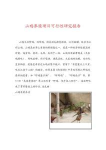 【精品】山鸡养殖项目可行性研究报告