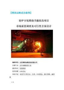 博思远略案例-窑炉全氧燃烧节能技改项目市场前景及投资可行性研究报告