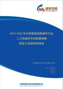 【完整版】2019-2025年中国智能控制部件行业二三线城市市场拓展策略制定与实施研究报告