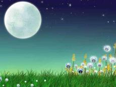 《课文16画满画儿的圆月亮》二年级下册小学语文课件