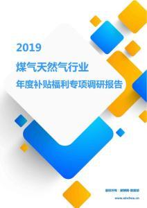 2019煤气天然气行业年度补贴福利专项调研报告.pdf