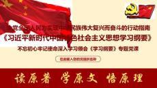 新时代中国特色社会主义思想学习纲要学习专题党课ppt课件