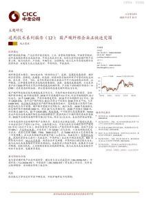 通用技术系列报告-国产碳纤..