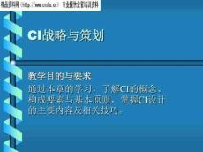 企业战略管理资料-CI战略与策划(PPT71页)精品文档