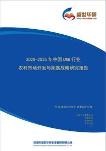 【完整版】2020-2025年中国UWB行业农村市场开发与拓展战略研究报告