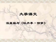 大学语文 汤显祖与《牡丹亭·惊梦》