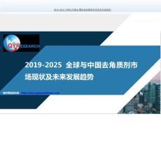 2019-2025全球与中国去角质剂市场现状及未来发展趋势