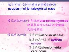 子宫颈癌ppt课件
