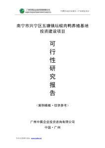 中撰咨询-南宁市兴宁区五塘镇坛棍肉鸭养殖基地可行性报告