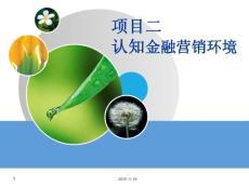項目二金融市場營銷環境ppt課件