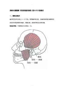 清晰大图图解 常见软组织损伤 四十六个压痛点