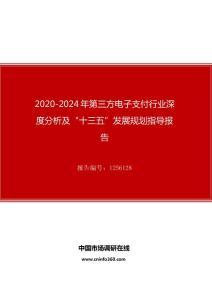 """2020年第三方电子支付行业深度分析及""""十四五""""发展规划指导报告"""