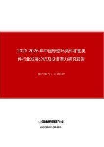 2020年中国厚壁环类件和管类件行业发展分析及投资潜力研究报告