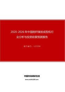 2020年中国秸秆煤炭成型机行业分析与投资前景预测报告