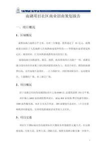 南湖项目社区商业招商策划..