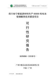 四川裕宁新能源材料年产60000吨电池级磷酸铁可研报告
