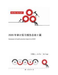 2020年审计实习报告总结2篇