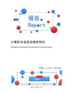 计算机专业实训报告例文
