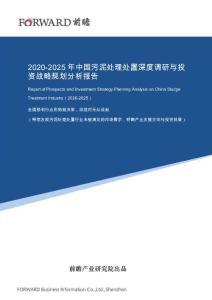 2020-2025年中国污泥处理处置深度调研与投资战略规划分析报告