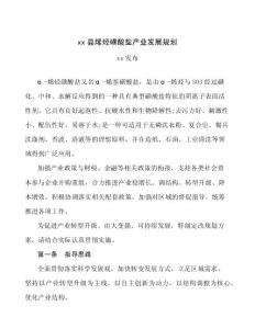 xx县烯烃磺酸盐产业发展规划