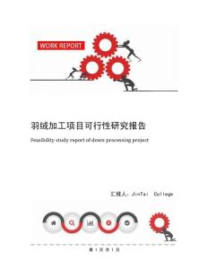 羽绒加工项目可行性研究报告