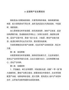 xx县面粉产业发展规划