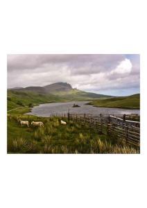 2011年2月12日 Scottish Highlands