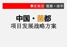 南华野生菌产业园项目发展战略方案