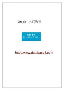Oracle入門教程115頁