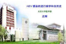 2009HBV感染的流行病學和自然史