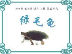 【小学教育】《绿毛龟》课件(沪教版五年级语文上册课件)