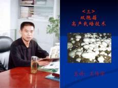 双孢菇栽培技术