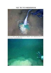 """""""蛟龙""""号在7062米海底发.."""