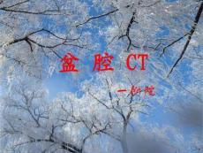 【医药健康】盆腔CT 一附..