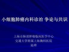 小细胞肺癌内科诊治争论与共识(武汉)